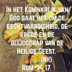Rom14 17z.jpg