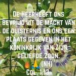 Col1 13.jpg