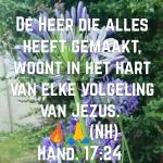 Hand17 24.jpg