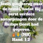 Hand1 2v.jpg
