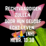 Hebr10 38w.jpg