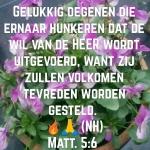 Matt5 6.jpg