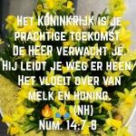 Num14 7-8.jpg